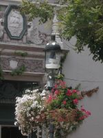 Lamp Post Flowers by ChibiLisi