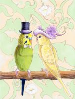 Love Budgies by calzephyr