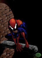 Spiderman colored by Vinz97