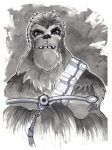 Chewbacca by misfitcorner