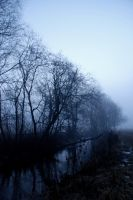The misty River by ingensteds
