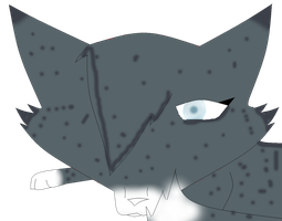 Speckledpelt by ScourgesKit