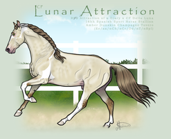 CF Lunar Attraction by JNFerrigno