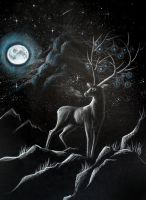Coldness of the Night by Drakeshya