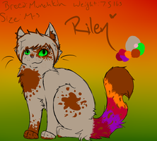 Riley Upd8 Ref by Mossstar8Backup