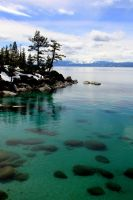 Tahoe Afternoon by sellsworth