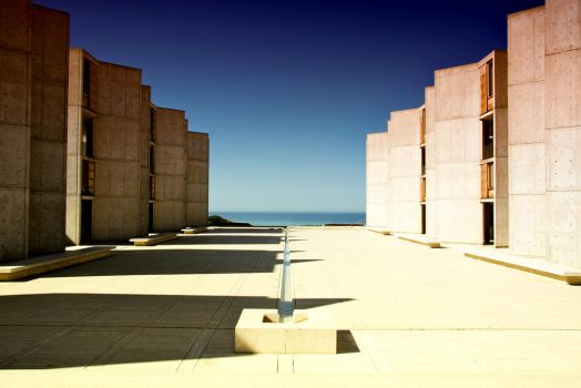 The Salk by 88neal88