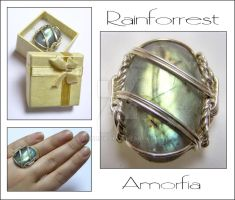 Rainforrest by amorfia