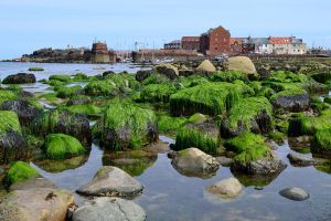 North Berwick Harbour by aprmason