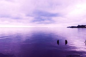 Purple Sea by EclipsePhotography12