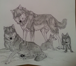 Symbol's family (Un-colored) by WhiteWolfCrisis13