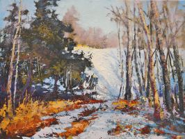 Winter At The Priddis Greens by artistwilder