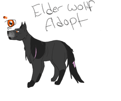 Elder Wolf Adoptable (closed) 5 points by XTwilight-SerenityX