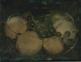 Fruit Bowl: Tintype by xXCold-FireXx