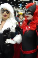 Blackcat and Batwoman cosplay by Alyssa-Ravenwood