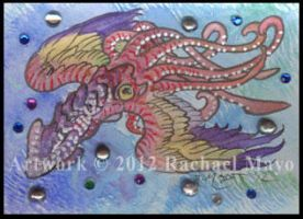 ACEO Squid 01 by rachaelm5