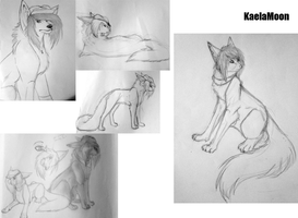 A series of awkwardly placed sketches! by KaelaMoon