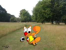 Football squirrels in the park by JimmyCartoonist