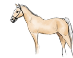 Horse Sketch by the26owls