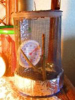 Home made Cage by AlexandersMantids