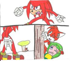 Knuckles is P.O'd by cmara