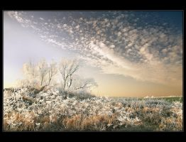 Winter in Poland - part 4 by Sesjusz