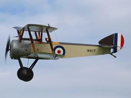 Sopwith Pup Old Warden by davepphotographer