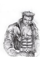 Wolverine 2 by summeralive