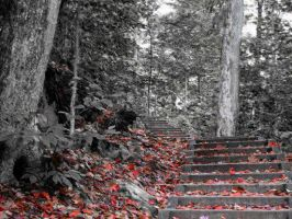 Autumn Stairs 2 by charlopunk