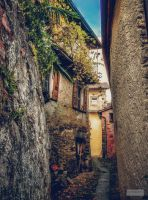 Village in the Mountains by Cormocodran15