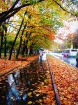 Autumn in Moscow by Dietrich444