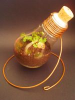 Earth Day-Save Energy-Recycle by Kosmu