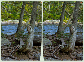 Pinguisibi (Sand River) 3D ::: HDR/RAW Stereoscopy by zour