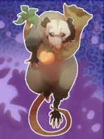 Opossum by skulldog