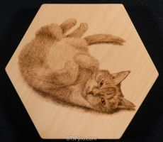 Cat portrait - Woodburning by brandojones