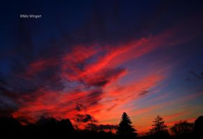 fantastic sky by Nils-Wingert