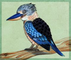 Blue-Winged Kookaburra by Silvixen