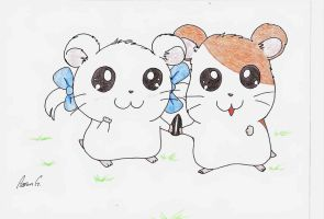 Hamtaro and Bijou by AaronG3