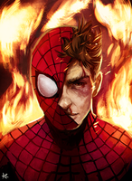 Spidey14sm by TwofortheRoad