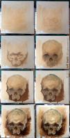 Skull study, step by step by JeffStahl