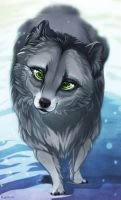 Dark Arctic Fox - Kiriban Prize by Plaguedog