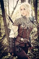 The Witcher Saga - Cirilla by love-squad