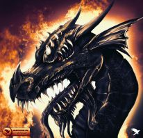 Dragon by unlimitedvisual