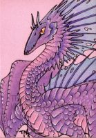 ACEO pink dragon by thedancingemu