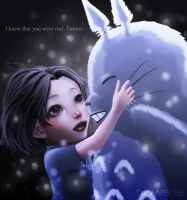 I knew that you were real, Totoro by Noweria