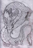 Chinese type dragon by blooddragongirl
