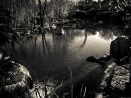 Chinese Gardens BW 3 by Wretched-Existence
