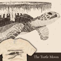 The Turtle Moves by graffd02
