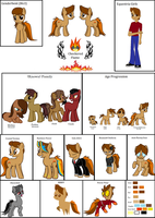 Checkered Flame's Reference Sheet (Updated) by Ignite-theFlame77