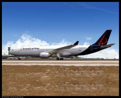 Brussels Airlines A330-300 - 2 by Nicshooter